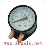 双针双管压力表 YZS-102