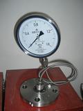Y-M系列隔膜壓力表