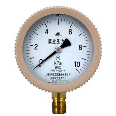 YE-75膜盒壓力表