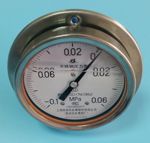 Y-100BF全不锈钢压力表