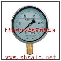 YE-100膜盒压力表-金沙手机网投