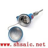 高压耐腐蚀泵耐磨热电偶