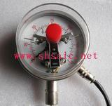 双金属电接点温度计WSSX-513