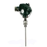 WZPK-336S铠装热电阻
