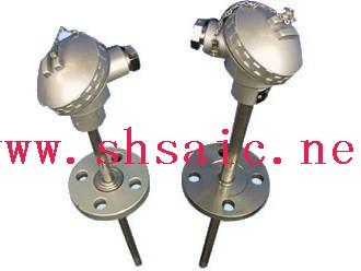 锥形保护管式铂电阻WZP2-621A