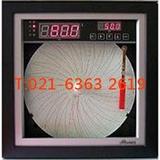 单笔数显记录仪XJGA-2110