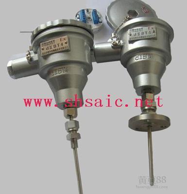 双支隔爆工业铂电阻WZP2-44SA