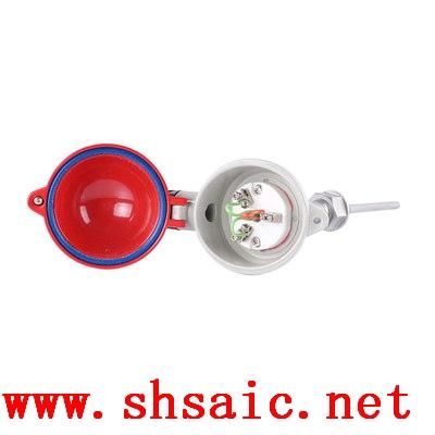 WRCK-121装置铠装电热偶
