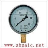 YA-100 氨压力表