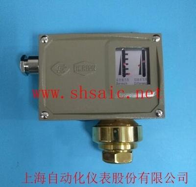上海上仪企业-0822311 D500/12DZ双触点(DPDT)压力控制器