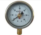 Y-60B-FZ不锈钢耐震压力表