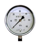 Y-21/2A1 抗震压力表
